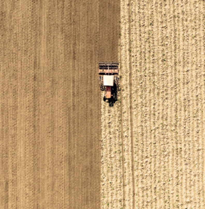 Coltivazioni e rispetto dei coltivatori, della filiera e della natura