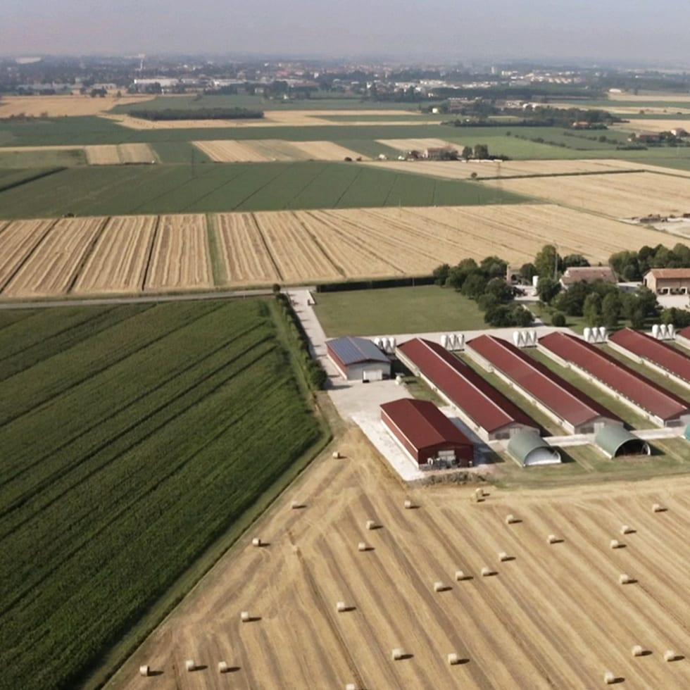 Coltivazioni e rispetto dei coltivatori e della natura