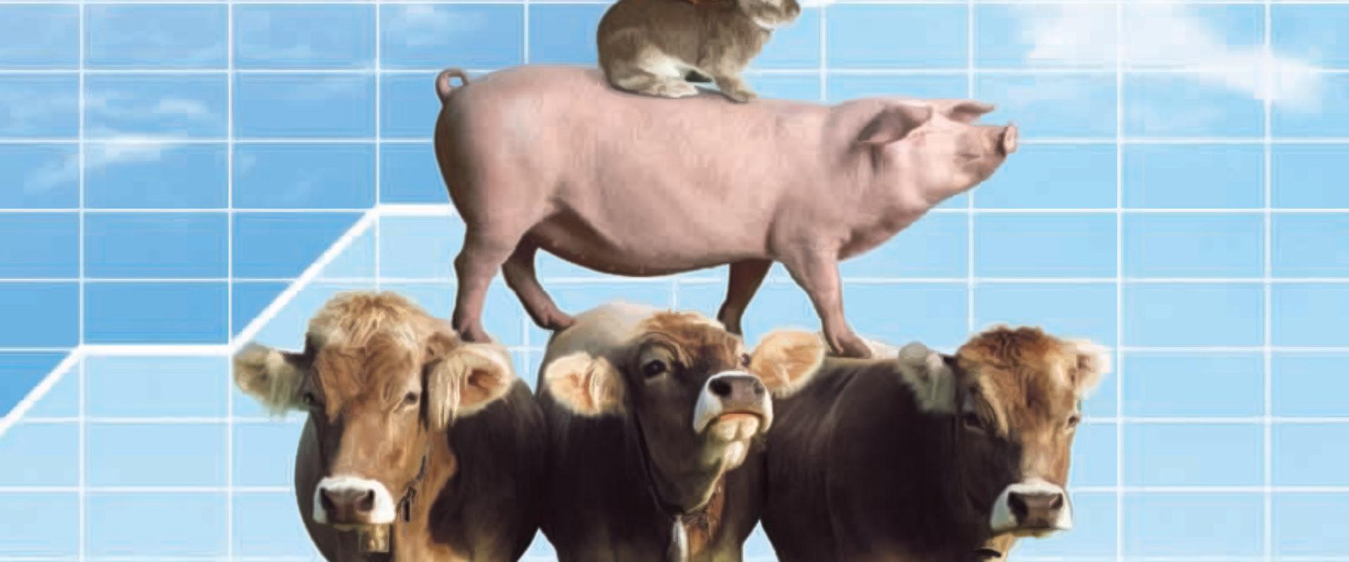 Frammento del cartellone pubblicitario del 2005 di Mangimi Veronesi